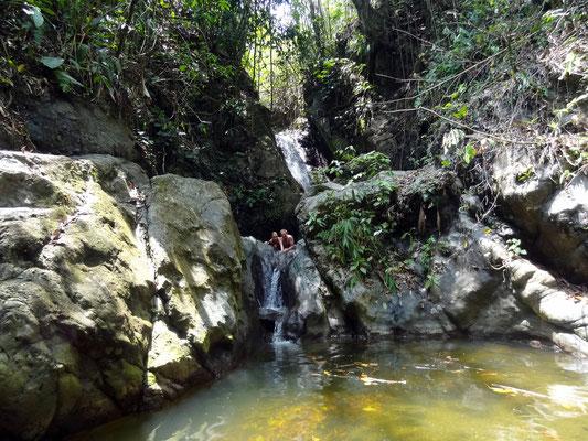 Baden im Natur- Swimmingpool