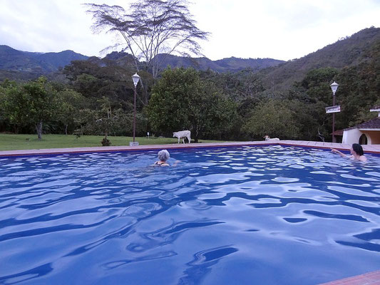 Pool mit großem Garten im Hotel El Refugio Tierradentro - San Andres de Pisimbala