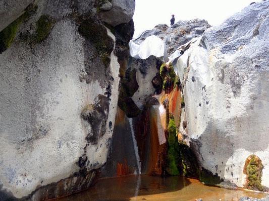 Am Nevado del Ruiz - Kaffeezone - Kolumbien