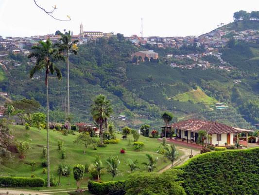 Blick auf Risaralda - Zona Cafetera - Kolumbien - foto by chapoleratours