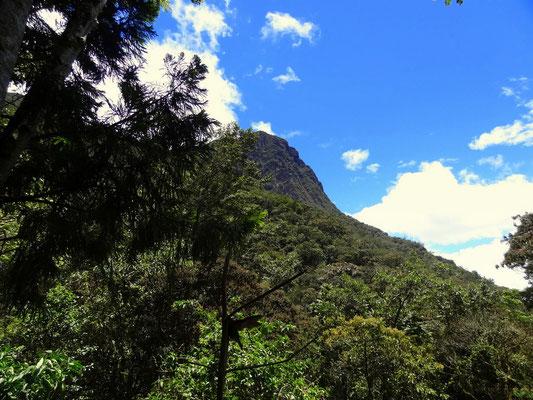 Cerro Morrogacho - Valle del Cocora - foto by chapoleratours