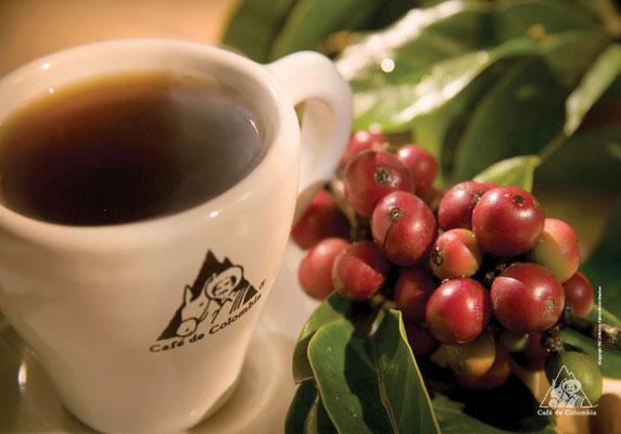Kaffee Kolumbien