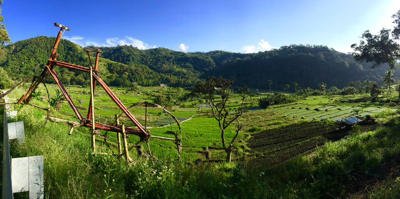 "Reisfelder beim Dorf ""Moni"""