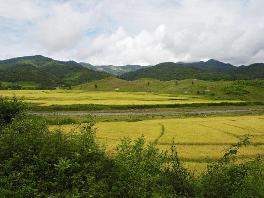 Hinterland Laos