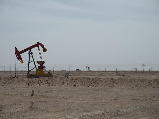 Riesige Fördergebiete von Gas oder Öl