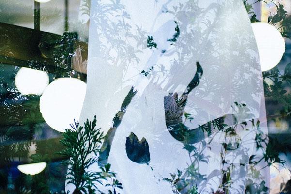 WIRED TOKYO - 渋谷 個展 (花 - oyu / 写真 - Mizuki Kato)