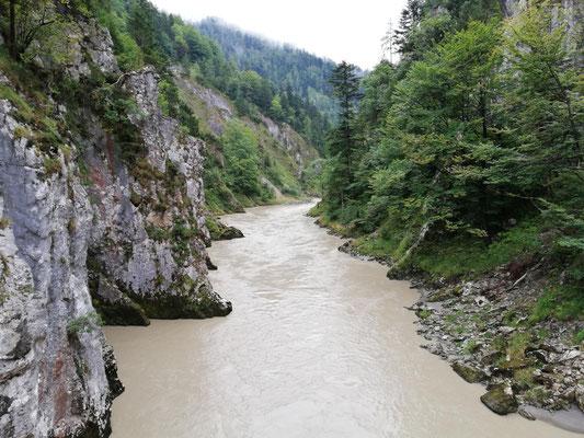 Tiroler Ache