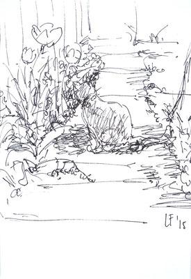 Poes in de tuin