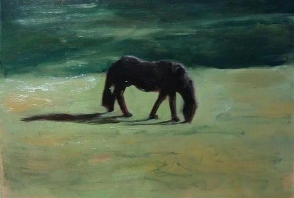 paard, olieverf op papier
