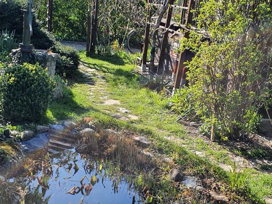 Teich im Frühjahr.
