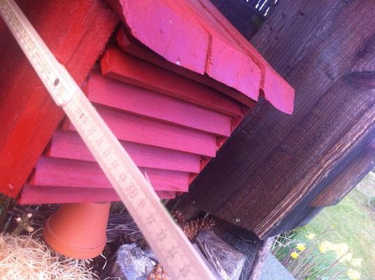 Insektenhotel räuterpark Stolpe nachbauen