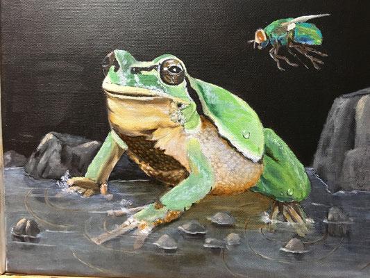 """""""Frosch mit Fliege"""", Öl auf Leinwand, 24 x 30, 2020"""
