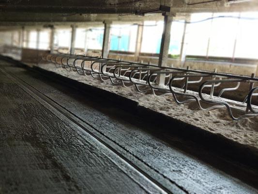 Ein leerer Stall im Sommer, wenn alle zu gerne auf der Weide sind.