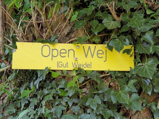 Open Wej