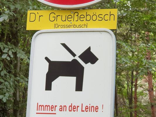 Eingang Grossebusch