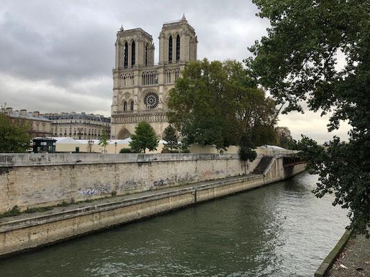 Cathédrale Notre dame de Paris from the Seine river