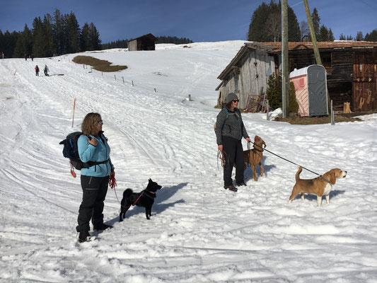 Julia und Nicole mit Odin, Barni und Fallou