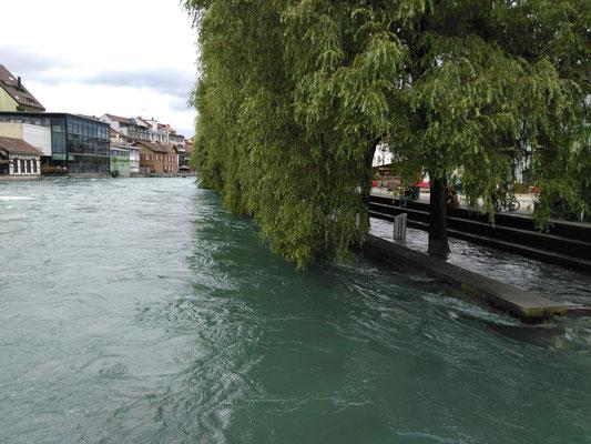 geflutete Promenade Mühleplatz