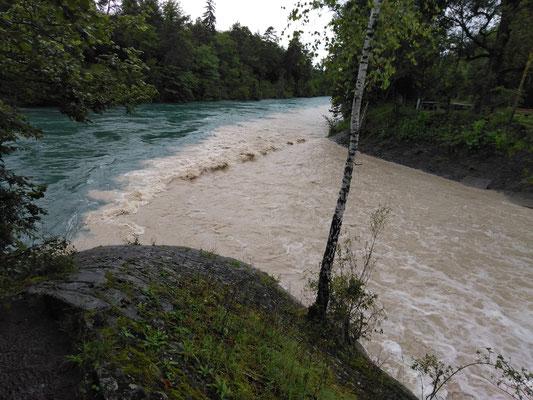Zulgeinlauf in die Aare niveaugleich der Wasserspiegel