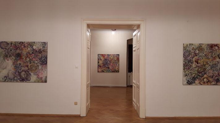 """Einblick in die Ausstellung """"Natura Animata"""" mit Karin Pliem im Schloss Ebenau, 2017 (c) Galerie Walker"""