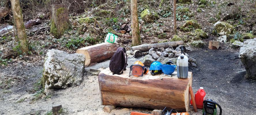 Hier links im Bild das neue Bänkli, welches aus einer umgestürzten Gigatanne geschnitten und bearbeitet wurde.