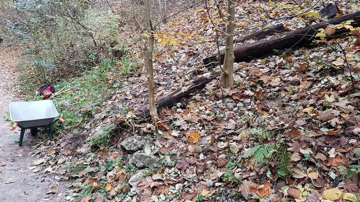 Hier wurde abrutschendes Gestein mit alten Baumstämmen mal gesichert.