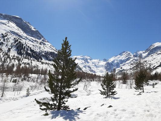 Glacier morteratsch