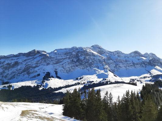 View of Peak Säntis