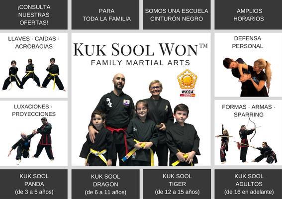Publicidad escuela de Kuk Sool Won Rivas 3