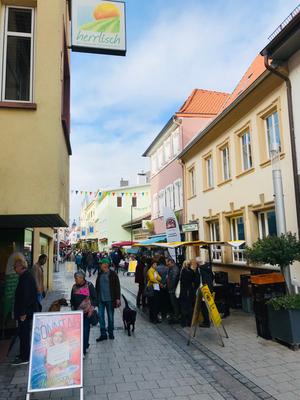 Fußgängerzone Grünstadt direkt vor dem Weinhaus Moser
