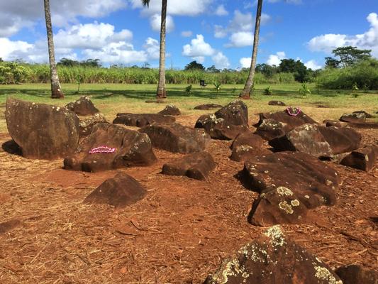 ハワイオアフ島クカニロコバースストーン ハワイの王族の王妃の出産に使われた石など、聖なる石が並ぶ
