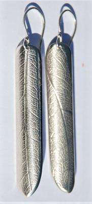 Longue-texture feuille