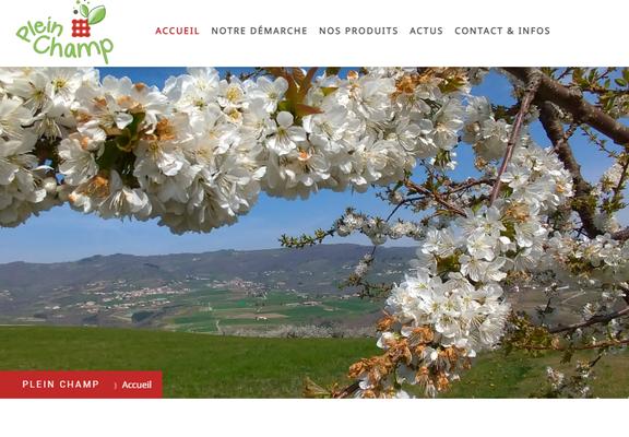 """Page """"Accueil""""  du site internet de Plein Champ"""