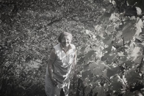 Maria Schäfer • von Anfang an mit dabei im Weinberg