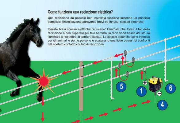 Recinto Elettrico Per Cani.Recinti Elettrici Selleria La Colombaia Articoli Equitazione On Line