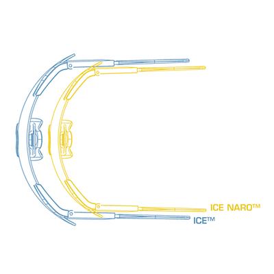 ICE と ICE NARO