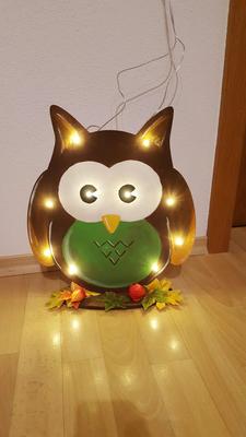 Eule Lampe