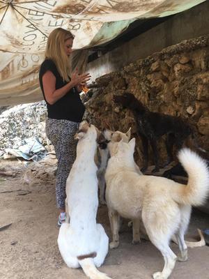 Nach 2 Jahren im Tierheim von Beta hat man immer das gleiche Rudel um sich herum und das ist bei jedem von uns ein anderes. Die Hunde suchen sich ihren Menschen aus...