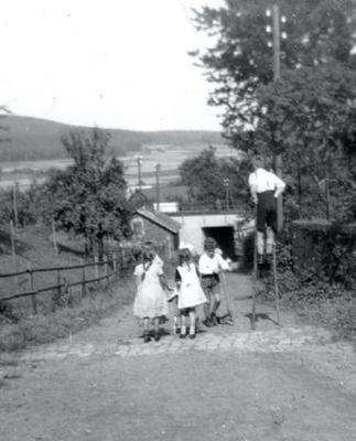 Langenholzstraße zwischen Sauer und Petri (1929)
