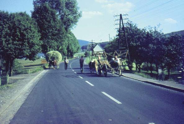 Ortsausgang Wiederstein (1958)