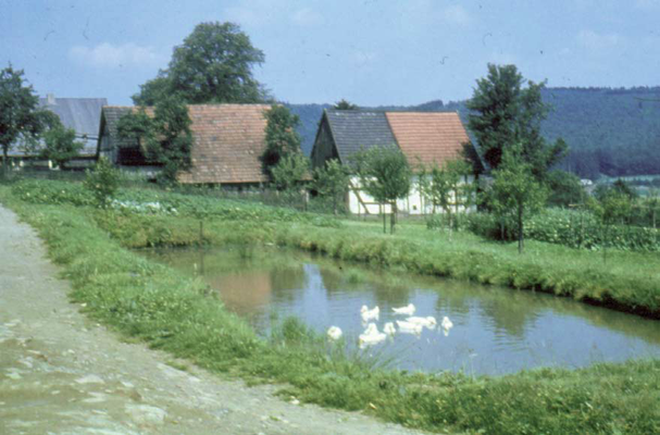 Löschteich in der Oberstraße (1958)