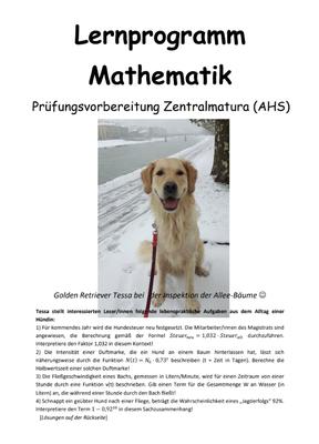 Lernprogramm Mathematik Prüfungsvorbereitung Zentralmatura