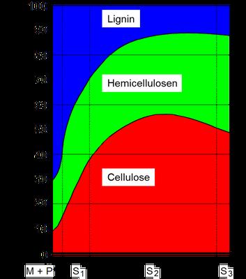 Verteilung der Bestandteile in den Faserschichten