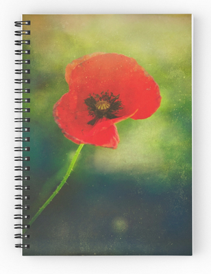 120 pages, Cover 350gsm, paper stock 90gsm, Front cover print , Available in a selection of ruled or graph pages, Handy document pocket inside the back cover