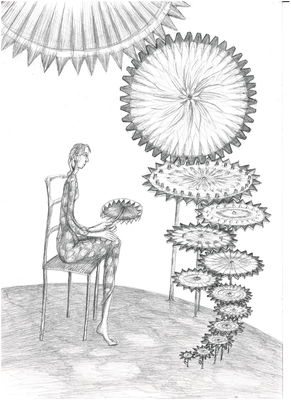 Die Blütezeit der Zahnradblumen