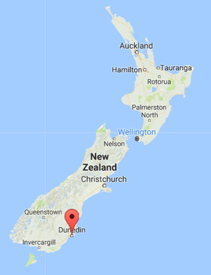 Dunedin, source: Google Map