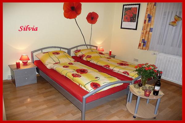 Unsere Traum Ferienwohnung Silvia in Freiburg - ideal für Geschäftsreisende