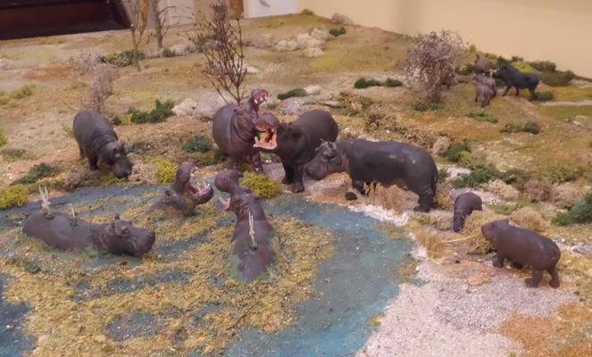 Flußpferde am Wasserloch