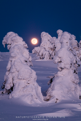 Mondaufgang im Harz