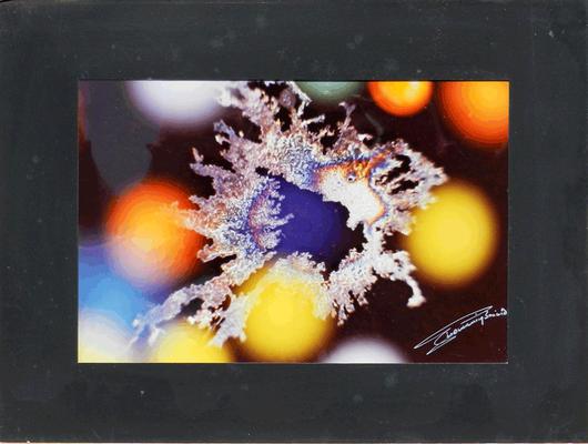 08C Bacino Gianni, Astratta realtà N. 4, 1986, carta fotografia 20x30 (con passeparteau 30x40 cm), magazzino temp. costante gradi 16/18 piano alto, immagine fotografica con data sul retro e firma dell'autore sul fronte